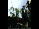 Wowksenia video
