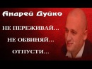 НЕ ПЕРЕЖИВАЙ, НЕ ОБВИНЯЙ, ОТПУСТИ. Андрей Дуйко