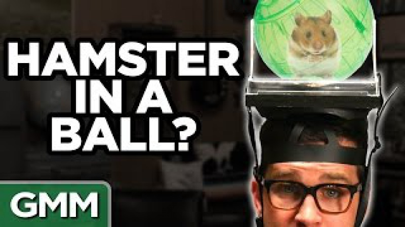 What's On My Head Challenge Ft Mayim Bialik