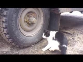 Том и джерри (русская беспощадная версия) - tired of playing cat and mouse
