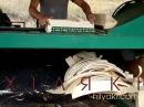 Производство осиновой щепы Aspen shingle production