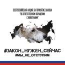 Личный фотоальбом Ольги Луценко