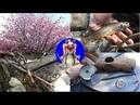 Медовый месяц друзей на Сахалине. Бошняково. Рыбалка и прочие радости.