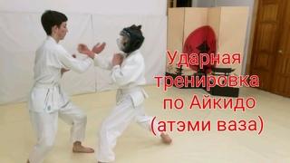 Aikido atemi wasa and hands deflection