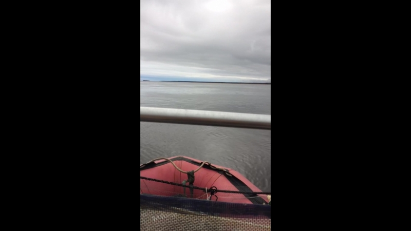 Лодка МНЕВ 470F, Мотор SeaPro 9,9(15)