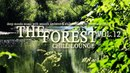 The Forest Chill Lounge Vol.12 Deep_Moods Smooth Ambient Chillout (Full HD 1080)