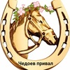 Отдых в Горном Алтае: кемпинг, конный прокат