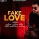 Mandeep Singh - Fake Love
