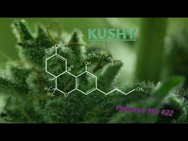 Kushy Progressive Psytrance Psytrance Mix 22