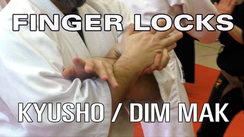 KYUSHO DIM MAK FINGERHEBEL - Seminar Kyusho, Atemi, Tuite Berlin 2016