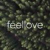 feellove