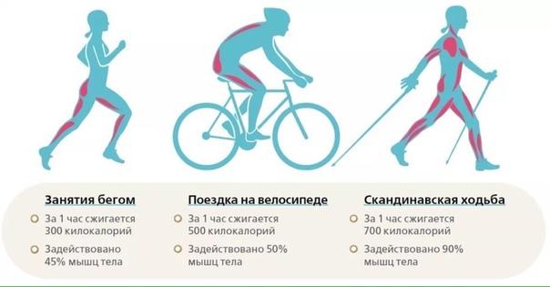 Сбросить Вес Велосипедом. Эффективность езды на велосипеде для похудения