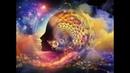 Влияние резонанса Шумана на мозг человека