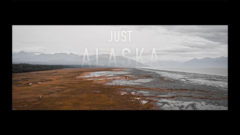 JUST ALASKA - Cinematic Travel Video shot on SONY a7iii, DJI Mavic air, and DJI Ronin S