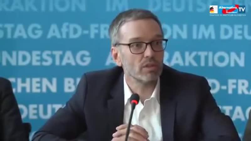 AfD PK Grenzschutz mit Dr Alice Weidel Dr Alexander Gauland Herbert Kickl FPÖ 28 01 2020