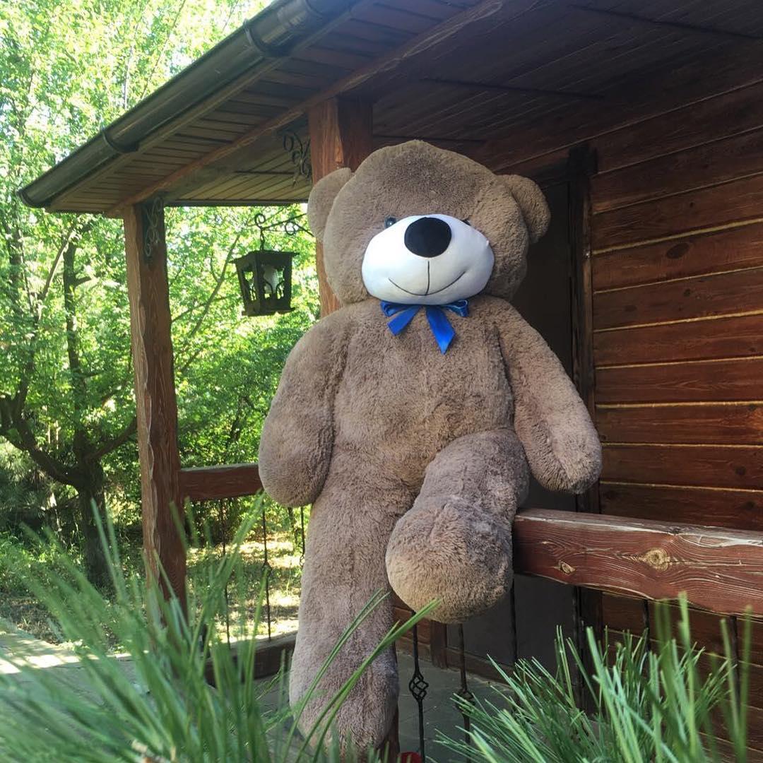 Медведи бывают самые разные.