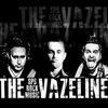 THE VAZELINE