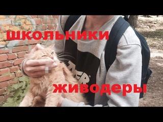 18+. Слабонервным не смотреть.Ученики школы г.Стерлитамак убили щенят и котят.