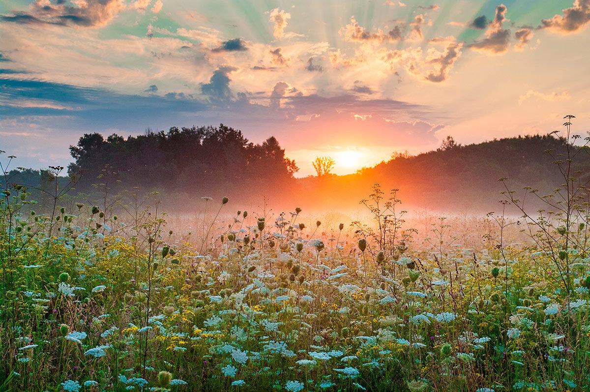 Картинки доброе утро земля