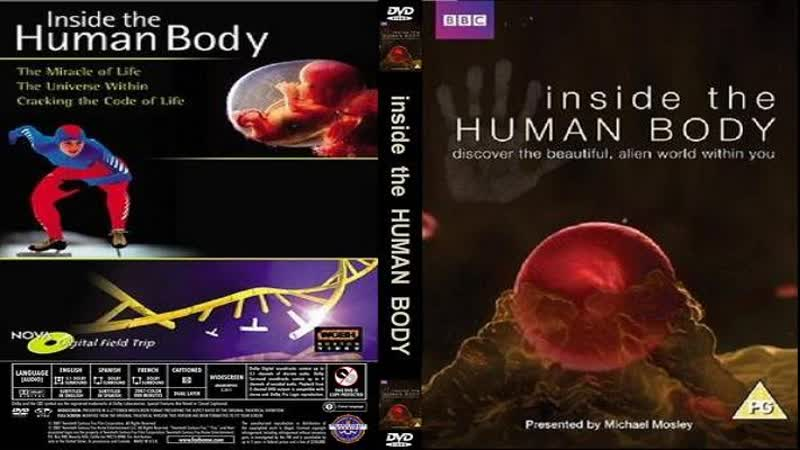 Внутри человеческого тела 02 серия Inside the human body 2011 HD 720р Перевод ДиоНиК