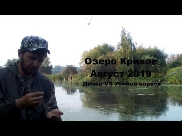 Рыбалка на Озере Кривое Донка VS Убийца карася