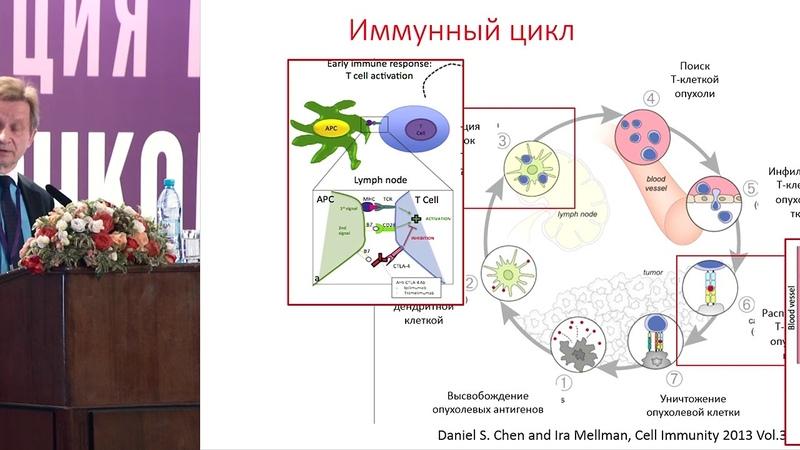 Эра иммуноонкологии: что мы узнали и что нам предстоит узнать