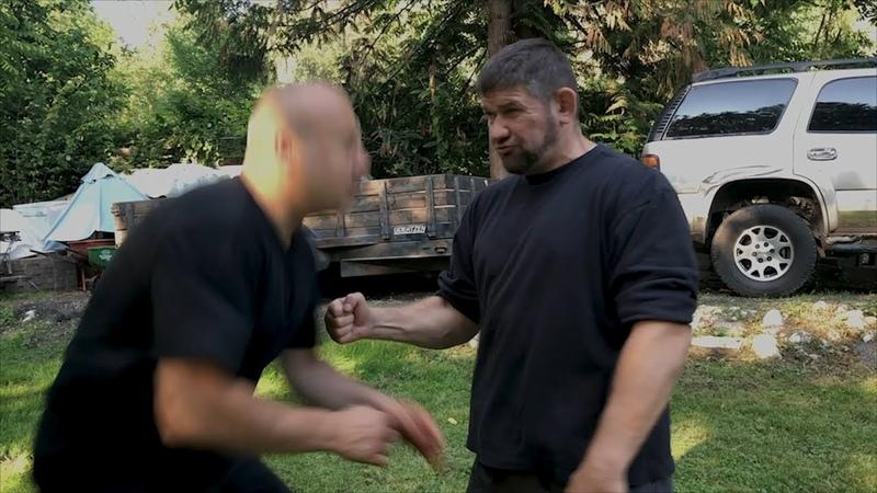 Дюймовый удар (one inch punch)