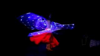 Световое шоу. Танец со светодиодными крыльями. Шоу на праздник.