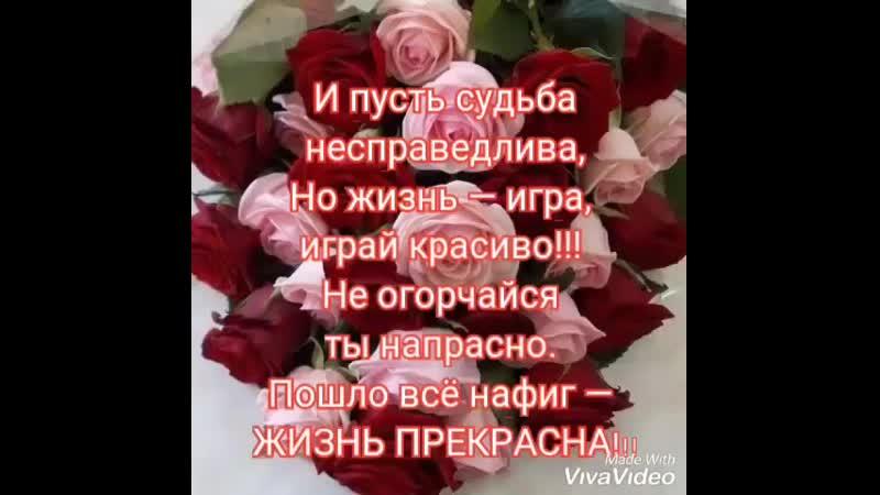 VIDEO 2019 07 06 09 11