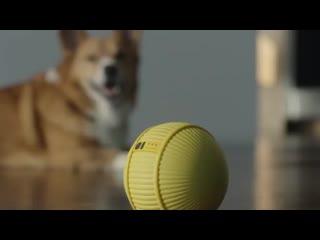 Робот-компаньон Ballie от Samsung