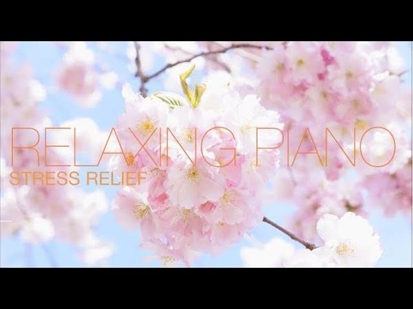 Спокойная Музыка Для Снятия Стресса RELAXING PIANO Music Звуки Природы Stress Relief Music