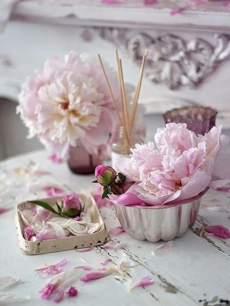 Делайте праздник каждый день, начиная с самого утра, и ваша жизнь засияет новыми яркими красками радости, добра и счастья С Добрым Утром!С новым