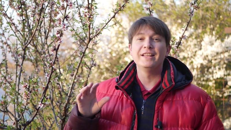 Телец / гороскоп на апрель 2019 / Астропрогноз Павел Чудинов