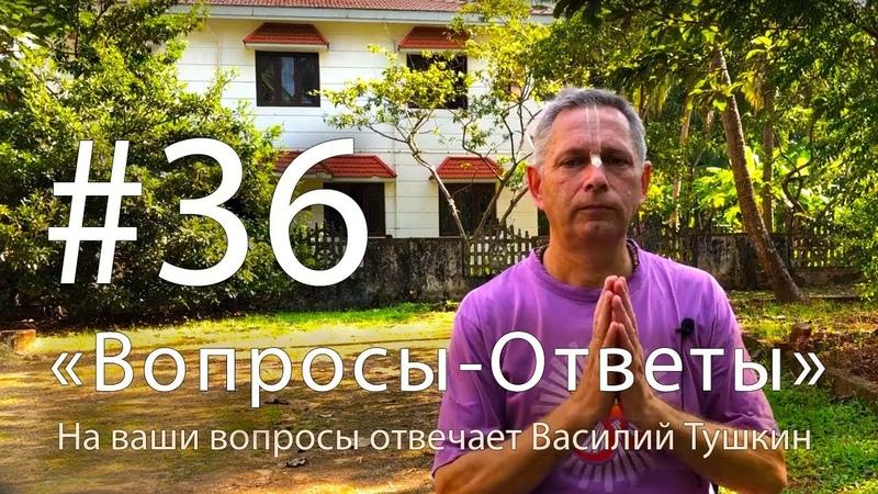 Вопросы-Ответы, Выпуск 36 - Василий Тушкин отвечает на ваши вопросы