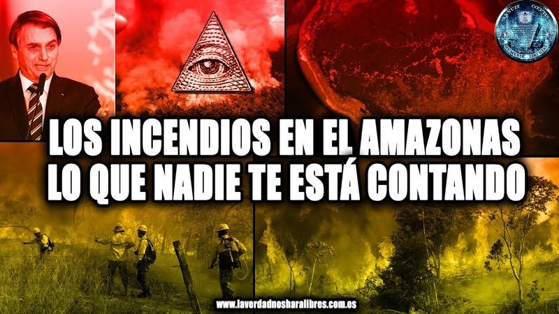 LOS INCENDIOS EN EL AMAZONAS, LO QUE NADIE TE ESTA CONTANDO