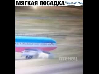 Спасибо, что выбрали нашу авиакомпанию