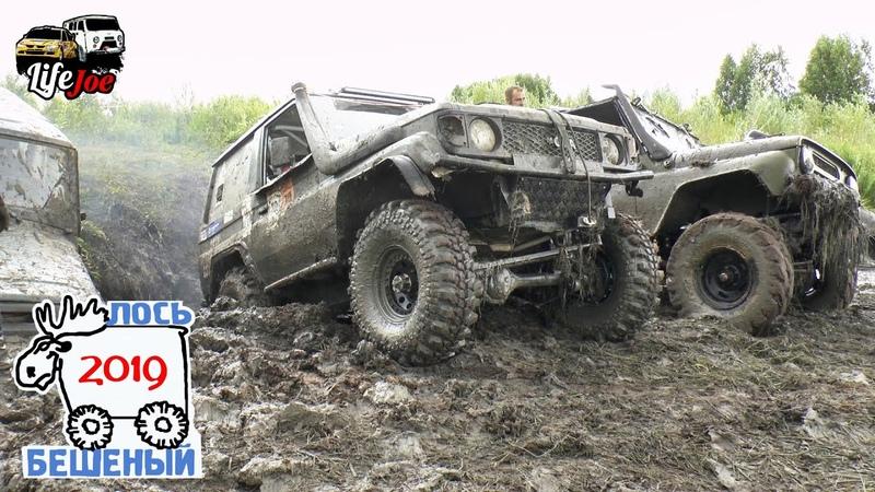Бешеный лось 2019 Тойота Ленд Крузер Джип Гранд Чероки и Джип Чероки в грязи Вторая часть