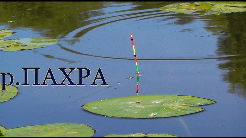 река ПАХРА, Подмосковье, занесло меня в иноземные края :) Поплавочная удочка на РЫБАЛКЕ- fishing
