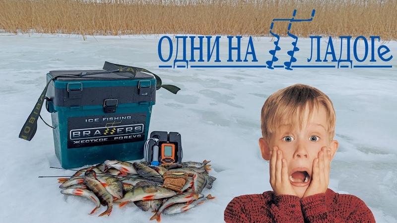 Зимняя рыбалка на Ладоге Ловля окуня на блесну Зимняя блесна Хороший клев окуня на Ладоге