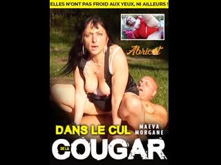 Dans le cul de la cougar