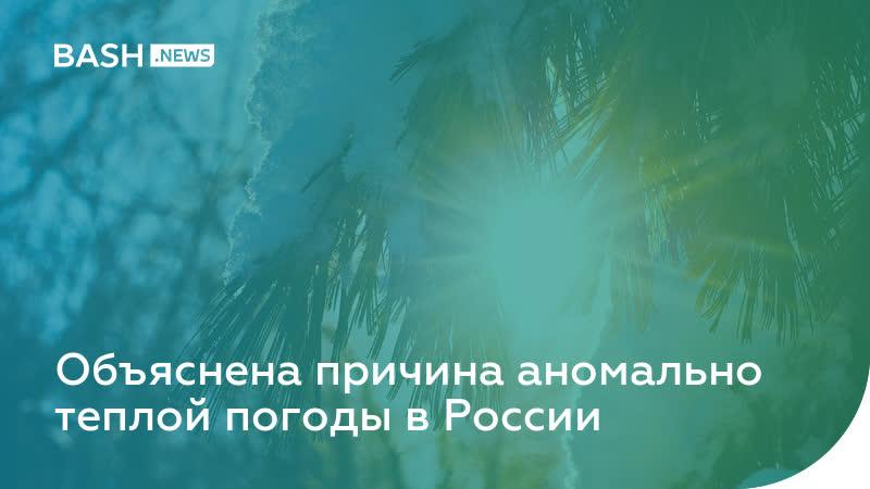 Объяснена причина аномально теплой погоды в России