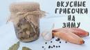 Очень вкусный рецепт маринованных маслят Заготовка грибов на зиму Мой опыт