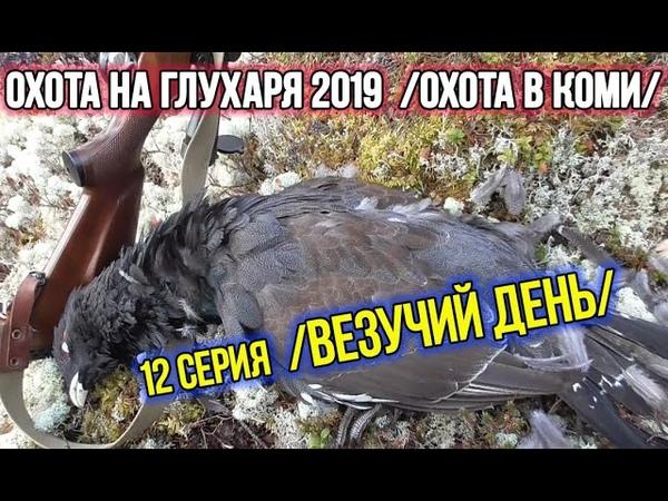 Охота на глухаря 2019 ✔️ Охота в Коми. 12 серия.