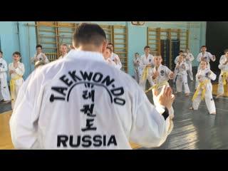 Технический семинар по Таеквон-До МФТ под руководством Черкасова Дмитрия Владимировича (V дан)