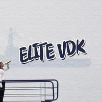 Логотип ELITE VDK