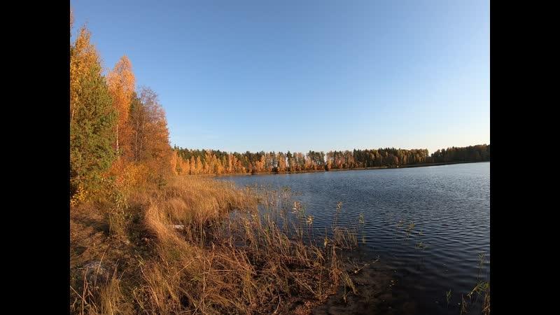 Золотая осень 03 10 2019 Озеро Чёрненькое