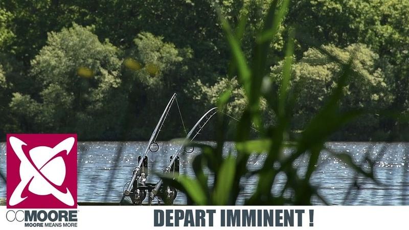 DEPART EN DIRECT ! pêche de la carpe