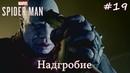 Spider Man на платину 19 Надгробие