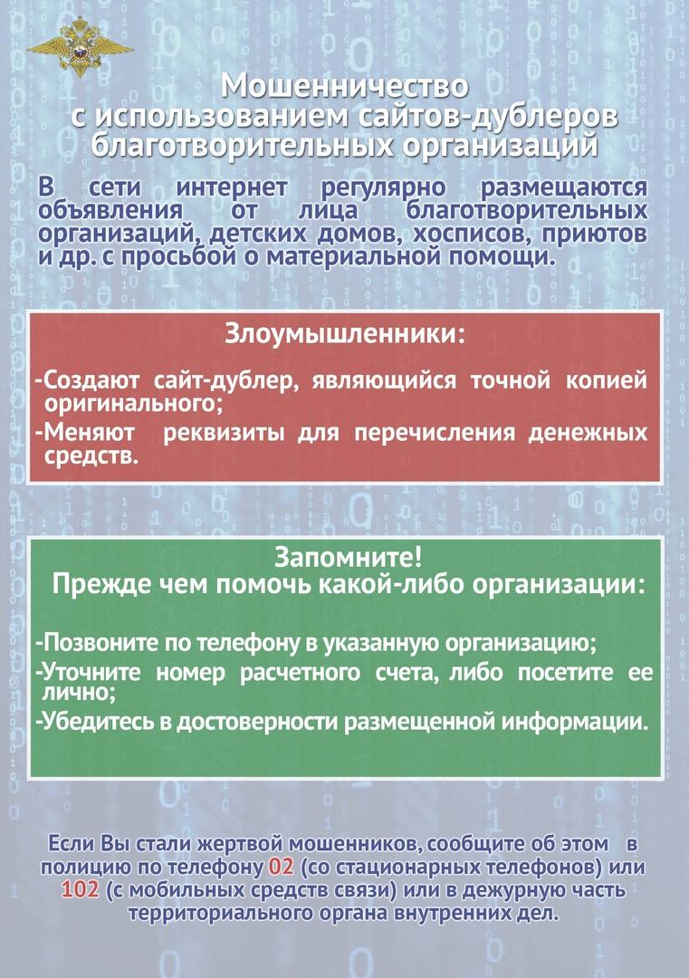 Коронавирус — обзор, изображение №5