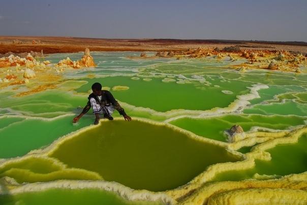 Ядовитые красоты пустыни Данакиль Наверное одним из самых загадочных и необычных мест на Земле является пустыня Данакиль. Это впадина, которая проходит на севере Эфиопии и Джибути и пересекается